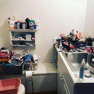 bathroom-before-organization