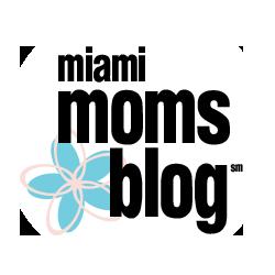 lisa-the-organizer-miami-moms-blog